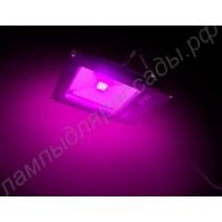"""Прожектор светодиодный полного спектра """"Менкар"""" 50Вт для теплиц и оранжерей"""