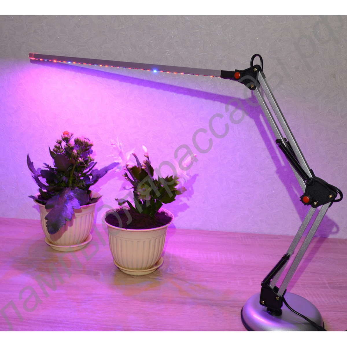 Лампа для домашнего выращивания растений 81